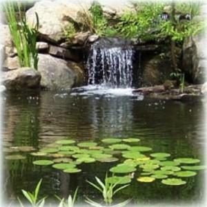 waterfall_2.169103847